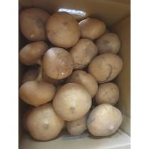 豆薯一箱25斤免運費